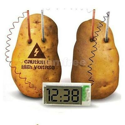 Novel Green Science Potato Clock Project Experiment Kit Kids Lab Home School