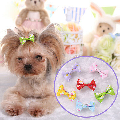 10PCS Lot Pet Dog Hair Clips Bows Cat Puppy Hair Accessories Grooming Bowknot