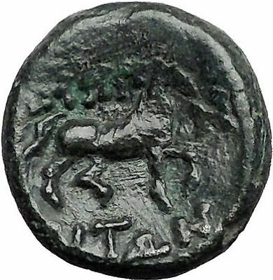 187BC Authentic Ancient Greek coin of AMPHIPOLIS MACEDONIA POSEIDON HORSE i55655