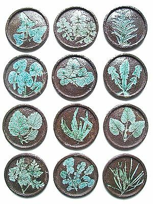 Set of Twelve Hand-Made Studio Pottery Botanical Medallions/Tiles - 20th Century
