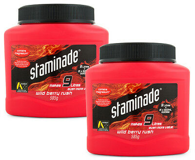 2 x Staminade Powder Wild Berry Rush 585g