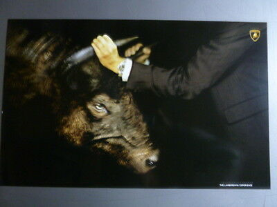 "2005 Lamborghini ""Bull by the Hands"" Print, Picture, Poster RARE!! Awesome L@@K"