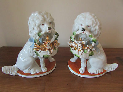 German Porcelain Seated Spaniel  Dogs