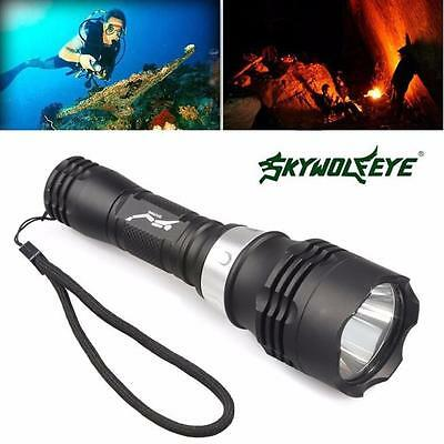 5000 Lumen 60m Waterproof CREE T6 LED Diving Flashlight Torch Scuba Light Lamp