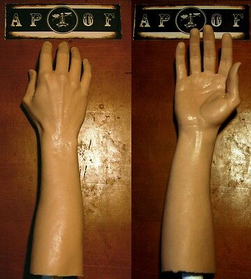 A Pound of Flesh Silicone Synthetic Arm - Left Arm
