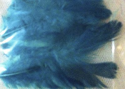 50 x TURQUOISE FEATHERS - Great for all Crafts!  Colourful, brightly dyed.