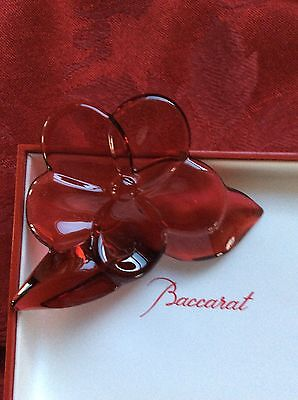 NEW NIB Exceptional FLAWLESS France BACCARAT Red Crystal FLOWER BLOSSOM ORCHID