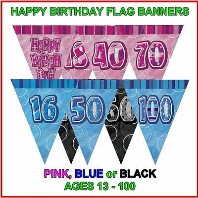 TRIANGLE FLAG BANNER Milestone Party BUNTING Decorations 12ft Glitz 13th-100th
