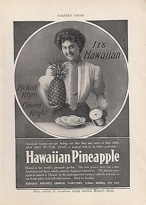1909 Hawaii Pineapple Growers Assn Ad: Pineapples Picked Ripe Canned Right