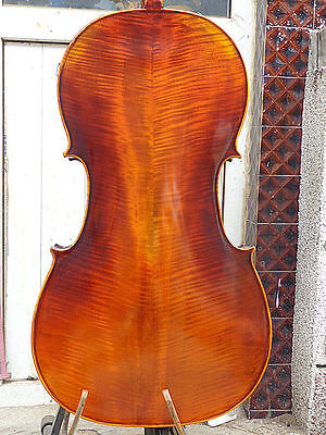 Cello 4/4 Size full Hand made antique style deep flamed maple back