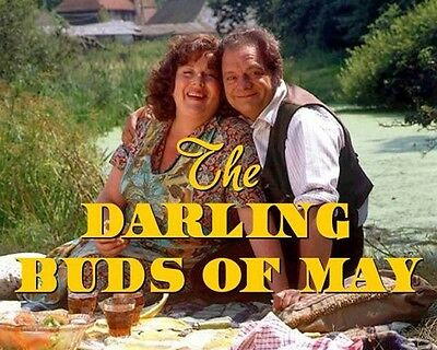 The Darling Buds Of May Titles 10x8 Photo
