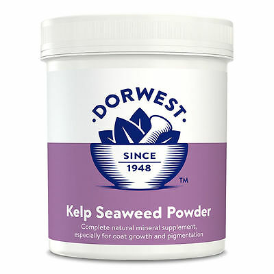 Kelp Seaweed Powder for Dogs and Cats 500 g - Dorwest Herbs