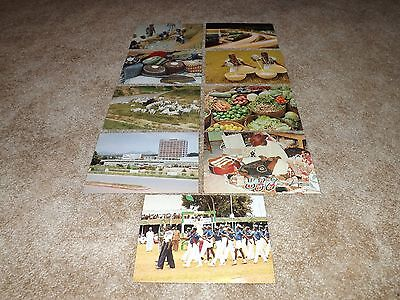 Nigeria-Set Of 9 Different Large Full-Color Department Of Information Postcards