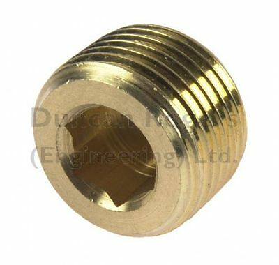 Brass Internal Hex Male BSP and NPT Blanking Plug