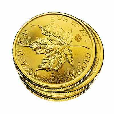 Lot of 3 - 1 oz Gold Canadian Maple Leaf Coins
