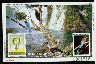 Bolivia 19951 Stamp On Stamp Imperf* Rotary Birds Tree Waterfall S11804