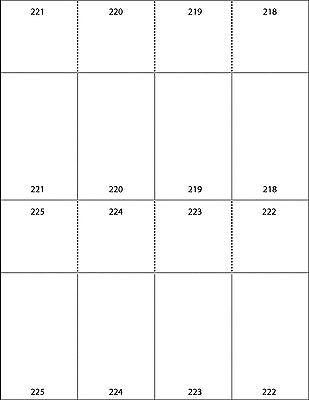 Ace Label Numbered Printable Raffle Tickets 2.125x5.5-Inch 125 Sheets 8 per S...