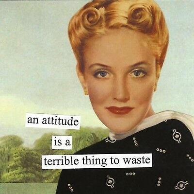 Paperproducts Design 4803 Anne Taintor Beverage/Cocktail Napkin An Attitude i...