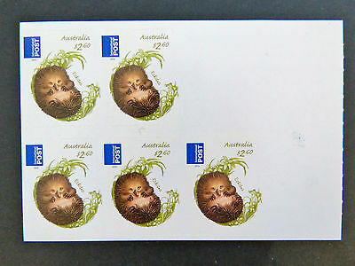 2013 Australian Stamps - Bush Babies II - Echidna Int'l Post-Sheetlet MNH