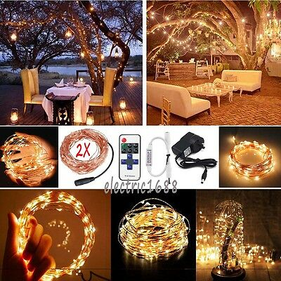 2X 10/20/30/50M LED Copper Wire Xmas Fairy String Light Waterproof +Remote +Plug