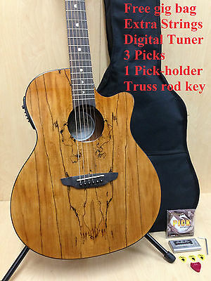 Gypsy E Spalt GC Full Size Steel String Acoustic Guitar, Natural +Free Gig Bag