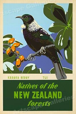 """1951 """"Natives of the New Zealand forests"""" Vintage Style Travel Poster - 24x36"""