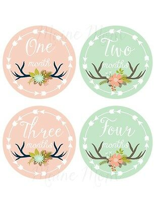 Baby Monthly Milestone Month Stickers Deer Antler Floral Woodland Nursery Decor