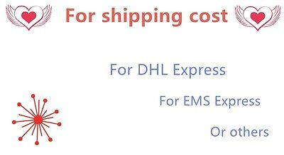 Shipping cost for DHL EMS Express or others