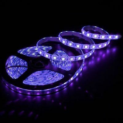 12V Purple UV Ultraviolet 5M 5050 SMD 300 Leds LED Strips Strip Light Waterproof