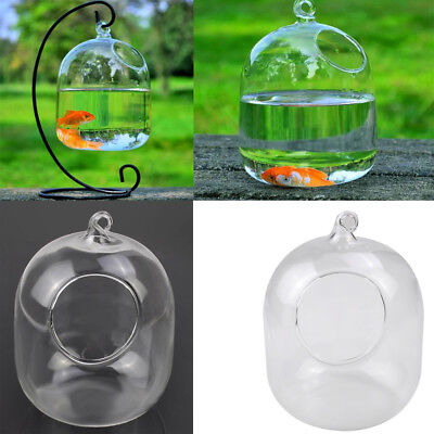 Clear Flower Hanging Vase Planter Terrarium Container Glass Home Garden Decor