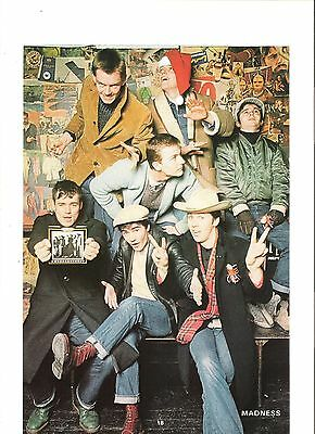 'crazy' MADNESS  magazine PHOTO/Poster/clipping 10x7 inches