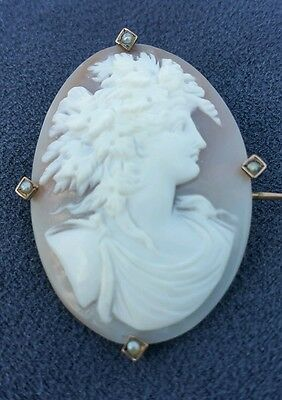 Carnelian Shell Cameo brooch and Mixed metals