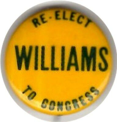 Williams For Congress Pin