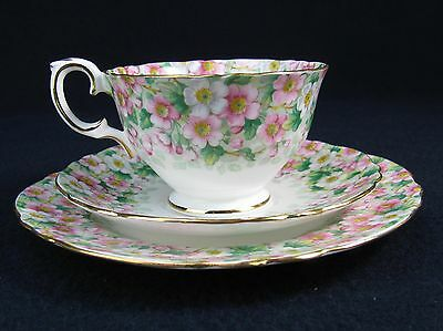 Vtg Crown Staffordshire Bone China Maytime -Chintz Cup And Saucer Set
