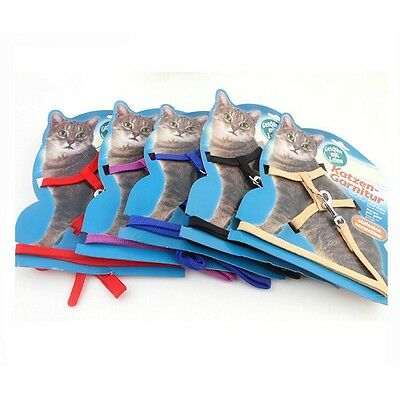 Réglable ANIMAL de compagnie Chat Chaton lapin ANIMAL harnais pour chien Collier