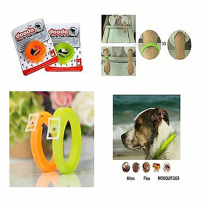 For Large Dogs Cats  Month Anti Fleas & Ticks & Mosquitoes Dog Collar Adjustable