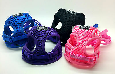 Xxs Tiny Dog Harness Lead Set Teacup Mini Puppy Chihuahua Rabbit Cat Toy