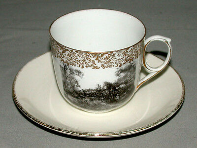 1900's Montreal Qc Mount Royal Park Austrian Victoria Carlsbad Cup & Saucer