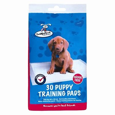 Puppy Dog Training Pee Pads 60 x 60CM Mat House Trainer Pet Extra Large XL
