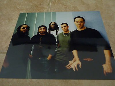 Dave Matthews Band Color 8x10 Photo Music Promo