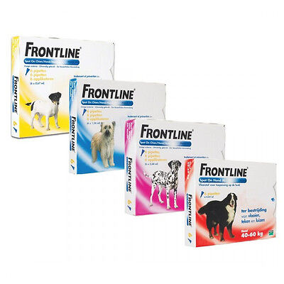 Frontline Spot On soin antiparasitaire pour chiens 20/40 kg  Boîte 6 Pipettes
