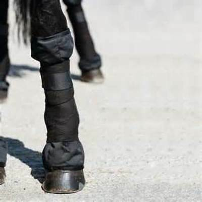 Rambo Ionic Stable Boots Full