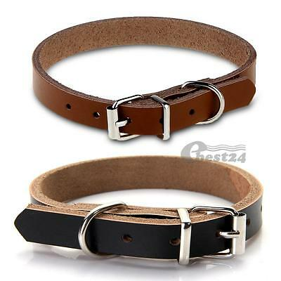 New Cute Cow Leather Dog Pet Cat Puppy Collar Neck Buckle Adjustable Gift