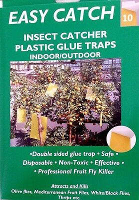 10 Non Toxic Sheets of Sticky Fly Trap Paper Double Sided Fruit Fly Glue Paper