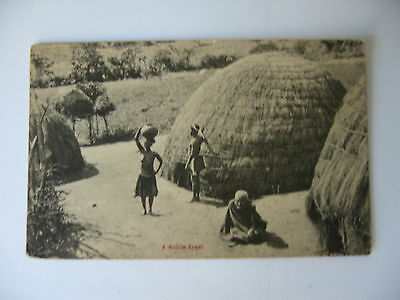 POSTCARD ETHNIC  A Native Kraal