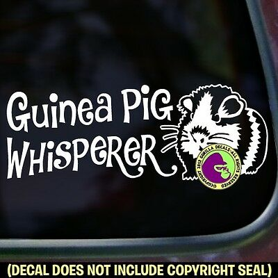 GUINEA PIG WHISPERER Vinyl Decal Sticker Cavy Pigs Love Car Window Wall Sign