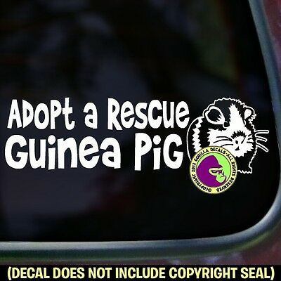 ADOPT A RESCUE GUINEA PIG Vinyl Decal Sticker Cavy Love Car Window Wall Sign