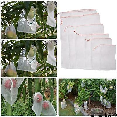 50PCS Garden Plant Fruit Protect Bag Sac Net #A Mesh Against Insect Pest Bird