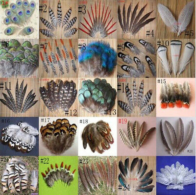 Wholesale 20-200 PCS Natural peacock & Pheasant feathers DIY 2-20CM/2-8inches