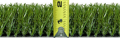 2 Ft  x 5 Ft Premium Artificial Pet Landscape Turf Synthetic Lawn Grass Dog Run